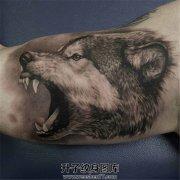 男性大臂内侧欧美黑灰写实狼头纹身