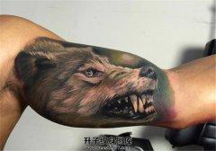 男性大臂内侧一只露出獠牙的狼纹身