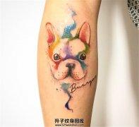 女生小臂泼墨宠物狗纹身