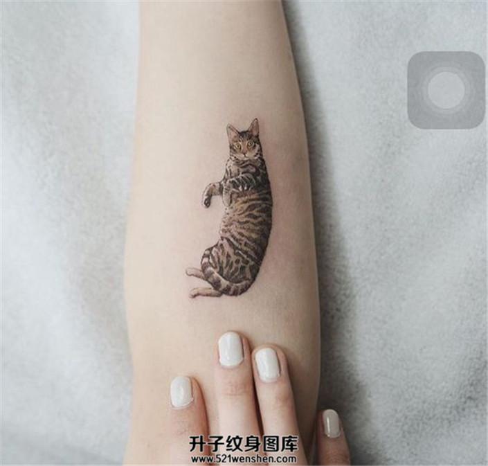 女生小臂猫纹身