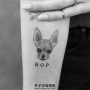 女生小臂纹身狗狗纹身