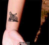 女生手腕纹什么有意义?自己家的宠物纹身