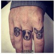 男性手指三只可爱的狗狗纹身
