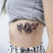 女生侧腰上三只可爱狗狗的纹身