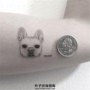 女生大臂微刺青硬币大小的宠物狗狗纹身