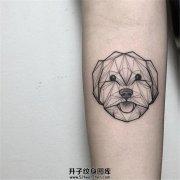 女生小臂线条狗狗纹身
