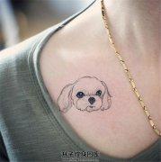 女生锁骨宠物狗纹身小清新纹身