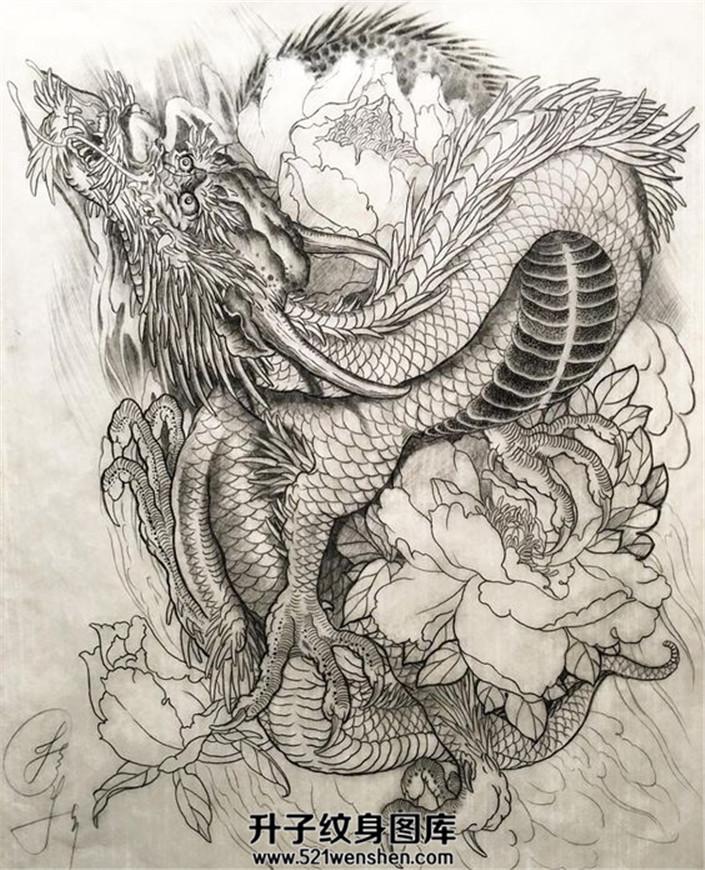 传统龙牡丹纹身手稿