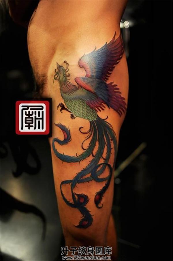 男性大臂彩色凤凰纹身