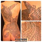 女性背部线条凤凰纹身