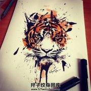 泼墨老虎纹身手稿