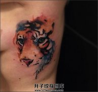 女性胸侧泼墨老虎纹身