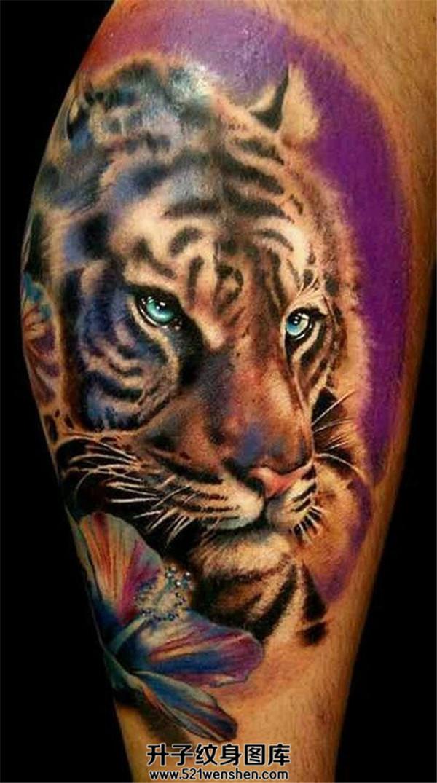 欧美风格彩色老虎纹身