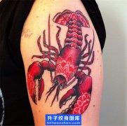 大臂彩色虾子纹身图案