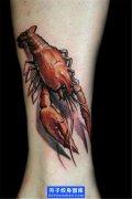 脚踝写实彩色虾子纹身图案