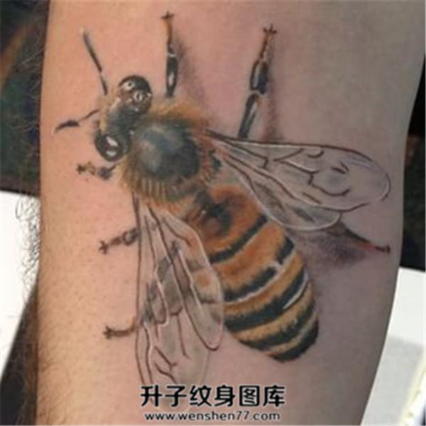 小腿写实蜜蜂纹身图案