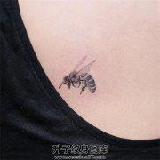 锁骨小清新蜜蜂纹身图案