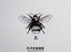 小蜜蜂纹身手稿图案