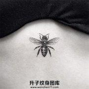 美女胸下小蜜蜂纹身图案