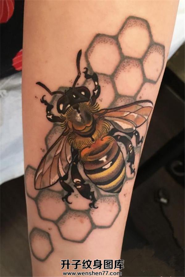 手臂欧美写实蜜蜂纹身图案大全