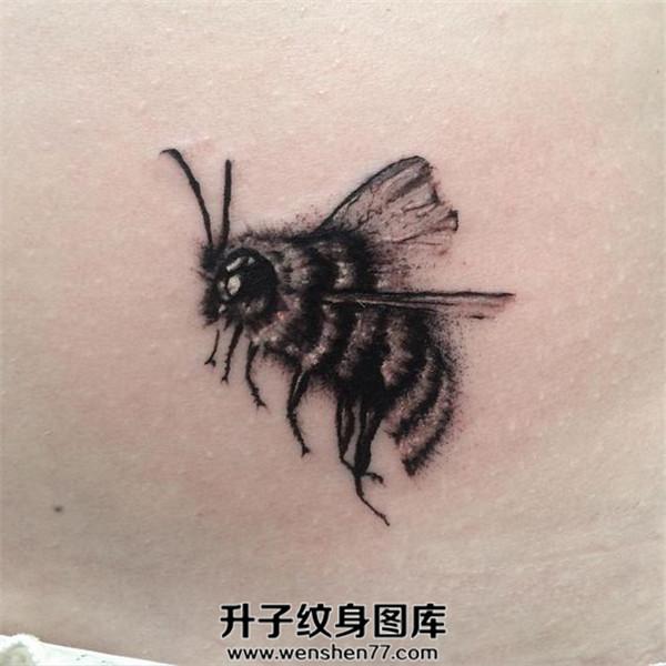 侧腰黑白欧美蜜蜂纹身图案