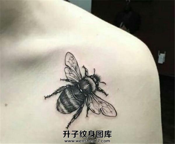 锁骨蜜蜂纹身图案大全