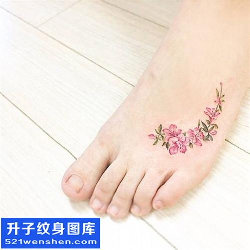 女性脚背牵牛花纹身图案大全
