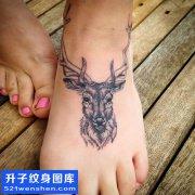 女性脚背欧美鹿纹身图案大全