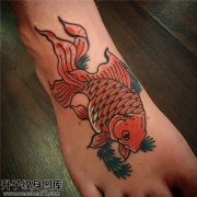 女性脚背传统彩色鱼纹身图案大全