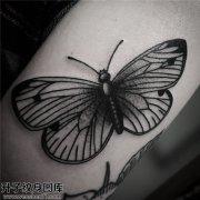 重庆纹身 女性小臂传统蝴蝶纹身图案大全