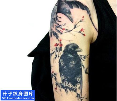 女性大臂水墨鸟纹身图案大全