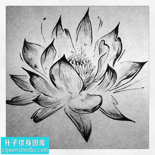 传统荷花纹身手稿图片大全