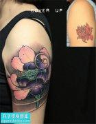 女性大臂彩色传统荷花纹身图片大全