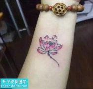 女性小臂彩色传统荷花纹身图案大全