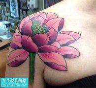 女性肩膀传统彩色荷花纹身图片大全