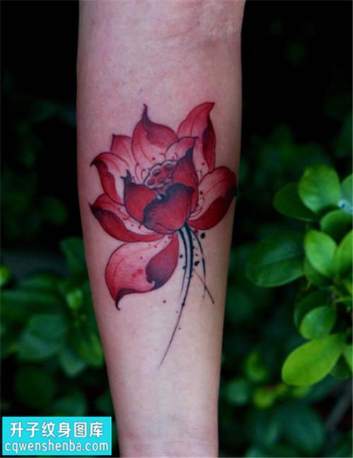 女性小臂传统彩色荷花纹身图片大全