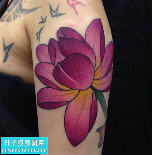 女性大臂传统彩色荷花纹身图片大全