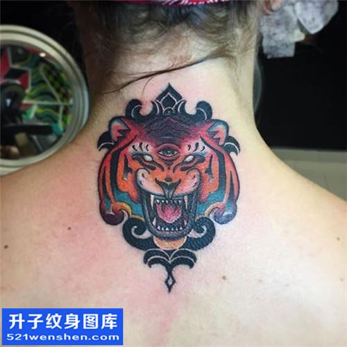 女性脖子彩色欧美老虎纹身图片大全