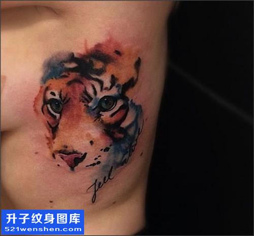 女性侧腰彩色欧美老虎纹身图片大全