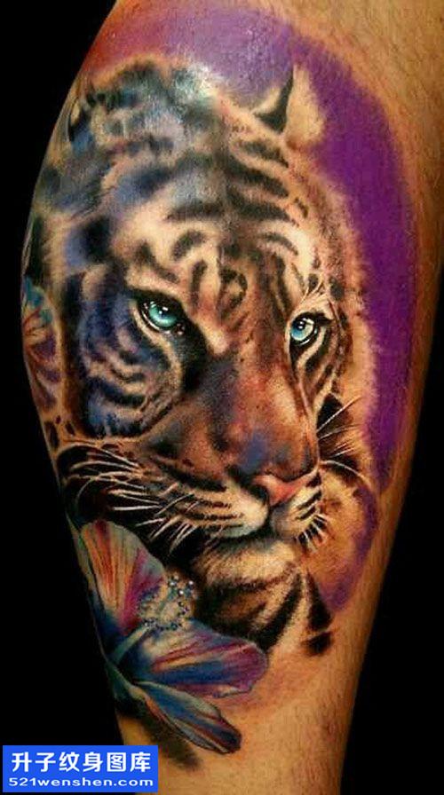 男性大腿欧美彩色老虎纹身图案大全