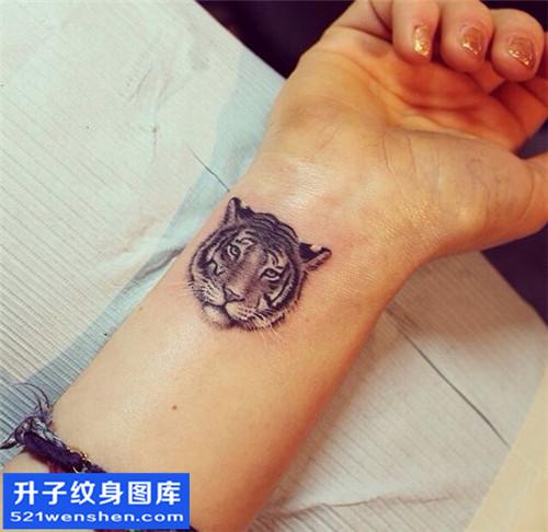 女性手腕小清新老虎纹身图片大全