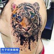 男性大臂欧美彩色老虎纹身图片大全