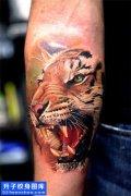 重庆纹身 男性小臂欧美彩色写实纹身图案大全
