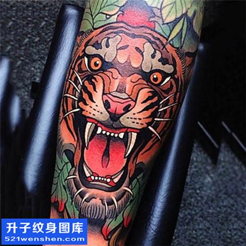 男性小臂欧美彩色老虎纹身图案大全