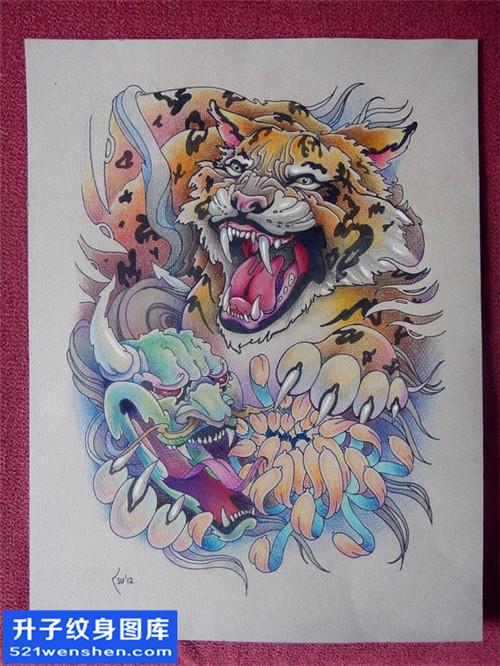 纹身手稿传统彩色老虎纹身图片大全