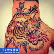 男性传统手背彩色老虎纹身图案大全