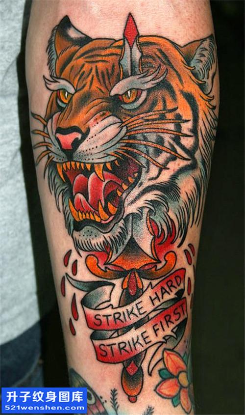 男性小臂欧美老虎纹身图片大全