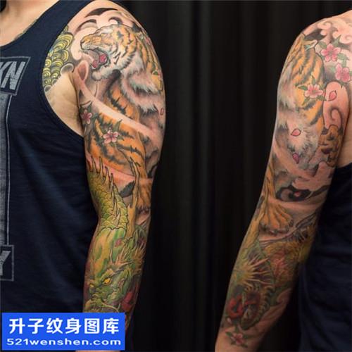 重庆纹身哪里便宜 男性传统彩色老虎龙纹身图片大全
