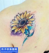 女性欧美后背彩色向日葵纹身图案大全