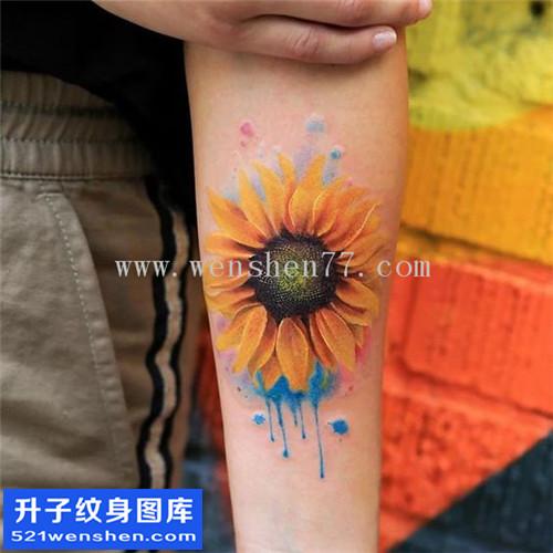 女性欧美小臂彩色向日葵纹身图案大全